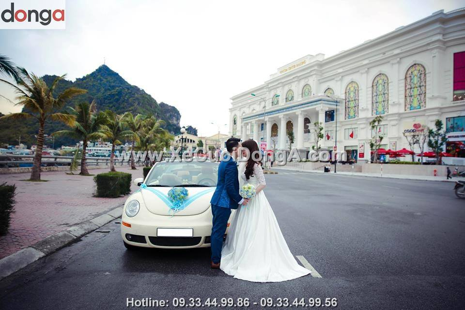 cho-thue-xe-cuoi-volkswagen (1)