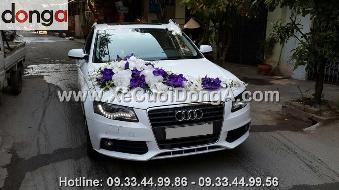 hinh-anh-xe-cuoi-audi-a4-tai-thuy-khue (1)