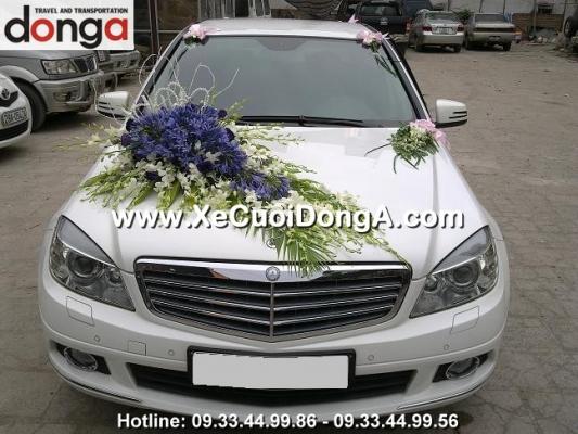hoa-xe-cuoi-dong-a (350)