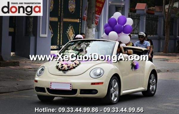 hoa-xe-cuoi-hoa-hong-da080 (4)