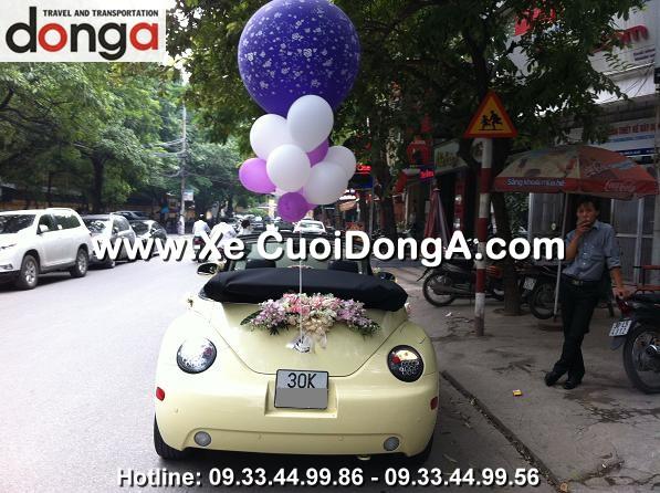 xe-cuoi-volkswagen-mui-tran-nguyen-hong (5)